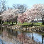 Boston's Parks